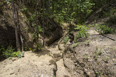 Narrow trail in the canyon Stock Image