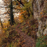 Narrow trail between trees, rocks and abyss. Autumn landscape in warm colors Royalty Free Stock Images