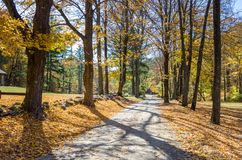 Narrow Unopaved Country Road in Autumn stock photos