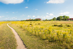 Narrow winding path through a colorful nature reserve Stock Images
