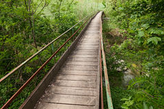 Narrow wooden bridge Royalty Free Stock Image