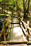Narrow wooden bridge in the park. Narrow wooden bridge in the the forest leading the path over the river stock image