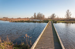 Narrow wooden gangway over a natural pond. Rippling water surface of a natural pond, a narrow wooden gangway and banks in autumn colors stock images