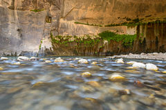 The narrow, Zion National park Stock Image