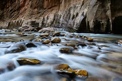 The narrow, Zion National park, USA Royalty Free Stock Photography
