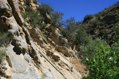 Narrows Geology. Geology and trees in a canyon, California Stock Photos