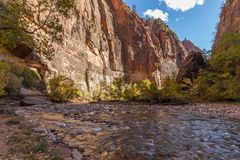 The Narrows Landscape Zion National Park Stock Images