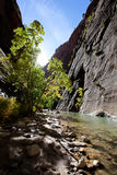 The Narrows trail in Zion National Park Stock Photos