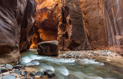 The Narrows trail, Zion national park, Utah Stock Images