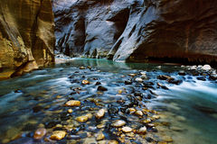 Narrows, Virgin River, UT royalty free stock images