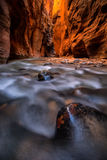The Narrows and Virgin River in Zion National Park Royalty Free Stock Photography