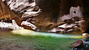 The Narrows at Zion. Gorgeous colors at the Zion Narrows. Zion National Park, Utah Royalty Free Stock Photography