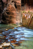 Narrows of Zion National Park. Virgin River flows through The Narrows of Zion National Park in southwestern Utah Royalty Free Stock Photo