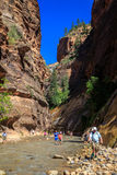 The Narrows, Zion National Park Stock Photography