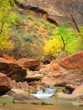 The Narrows, Zion National Park, Utah stock image
