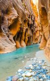 The Narrows, Zion National Park. The Virgin River in The Narrows in Zion National Park royalty free stock photo