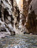 The Narrows in Zion NP Stock Image