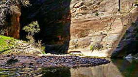 The Narrows at Zion. Shadow and sun at the Zion Narrows. Zion National Park, Utah Royalty Free Stock Photography