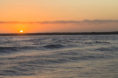 Nart Paddlers oceanu wschód słońca obraz stock