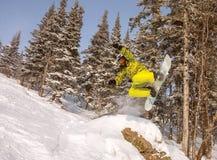 Narta; jazda na snowboardzie; snowboard; sporty; praca; zabawa; samiec; ono uśmiecha się; Obraz Royalty Free