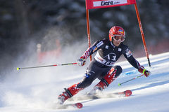 NARTA: Lienz giganta slalom Fotografia Stock