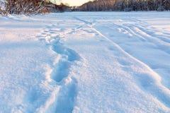 Narty footpath na obrzeżach miasto i ślad zdjęcie stock
