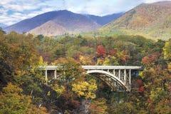 Naruko峡谷的秋天颜色在日本 库存图片