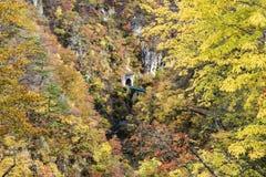 Naruko峡谷的秋天颜色在日本 免版税库存图片
