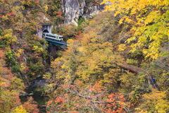Naruko Gorge Autumn leaves in the fall season, Japan Royalty Free Stock Image