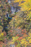 Naruko Gorge Autumn leaves in the fall season, Japan Royalty Free Stock Images