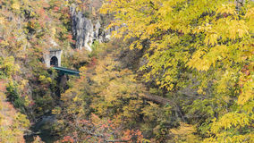 Naruko Gorge Autumn leaves in the fall season, Japan Royalty Free Stock Photo