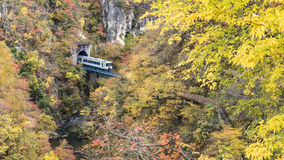 Naruko Gorge Autumn leaves in the fall season, Japan Royalty Free Stock Photography