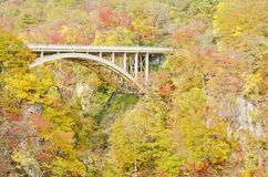 Naruko Gorge Bridge Stock Image