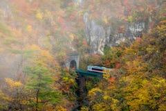 Naruko-Schlucht in der Herbstsaison lizenzfreie stockbilder