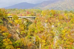 Naruko-Schlucht im Herbst stockbilder