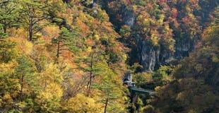 Naruko-Schluchttal mit Bahntunnel in Miyagi Tohoku Japan stockfotografie