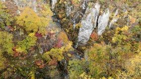 Naruko wąwozu jesieni liście w sezonie jesiennym, Japonia Obrazy Royalty Free