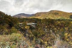 Naruko wąwozu jesieni liście w sezonie jesiennym, Japonia Zdjęcia Royalty Free