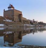 Narva堡垒冬天风景赫尔曼城堡  库存图片