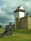 narva эстонии замока Стоковая Фотография RF
