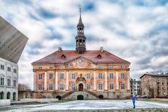 Narva/Estland Het oude stadhuis Stock Foto