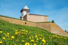 Narva forteca Estonia, UE fotografia royalty free