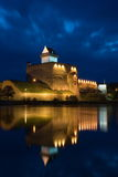 narva herman замока Стоковая Фотография RF