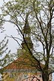Narvastadhuis stock afbeeldingen
