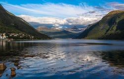 Narvik海湾- Ofotfjord。 挪威 免版税库存照片