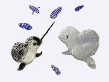 Narwhal and beluga. A narwhal and a beluga hunting cuttlefish Stock Image