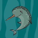 Narwhal Royalty Free Stock Images
