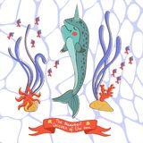 Narwhal the unicorn of the sea Royalty Free Stock Photography