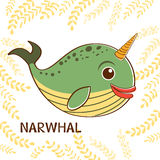 Narwhal the unicorn of the sea Royalty Free Stock Photos