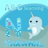Narwhal W παιδιών γραμμάτων ABC Ν μωρών ουράνιων τόξων κέρατων διανυσματικό απεικόνισης χαριτωμένο κινούμενων σχεδίων narwhal δια απεικόνιση αποθεμάτων